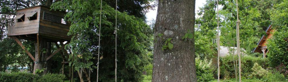 Met zijn 2000m² parktuin is Les Ondes uniek in de Ardennen. Geniet van de rust en de natuur.