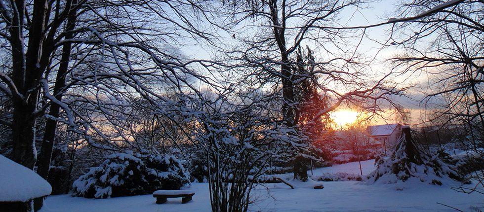 Ervaar de prachtige natuur van de Ardennen, ook in de winter !